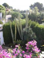 Foto 12 Villa in Javea zu vermieten 2für1 Woche