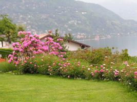 Foto 9 Villa am Lago Maggiore