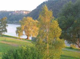 Foto 2 Villa am Rhein Loreley  mit 3 Ferienwohnungen