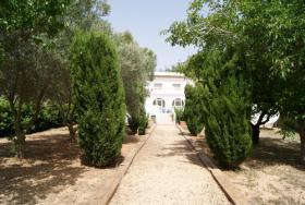 Foto 4 Villa nur 2 km von den Stränden in Javea an der Costa Blanca