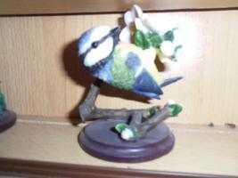 Foto 3 Vogelsammlung