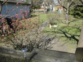 Foto 8 Vollerschlossenes super schönes Grundstück mit Bungalow