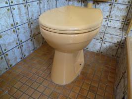 WC-Becken mit Deckel, Farbe curry