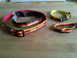Foto 2 WM Hundehalsbänder der Renner ;-)