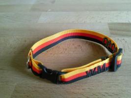 Foto 7 WM Hundehalsbänder der Renner ;-)