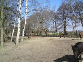 Foto 2 Wallach-WG sucht 2 Mitbewohner :-) , priv. in Bötzow