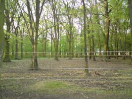 Foto 3 Wallach-WG sucht 2 Mitbewohner :-) , priv. in Bötzow