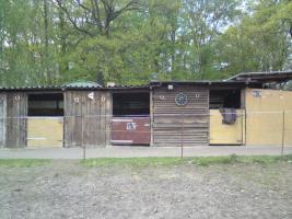 Foto 6 Wallach-WG sucht 2 Mitbewohner :-) , priv. in Bötzow