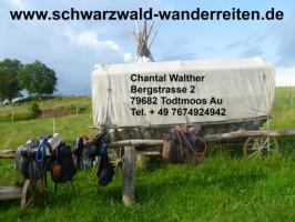Foto 6 Wanderreiten für Erwachsene und Jugendliche in Todtmoos Au