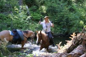 Foto 2 Wanderreiten für Erwachsene, Entschleunigen in Todtmoos Au, Pferdetrekking, Reitferien