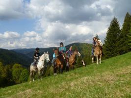 Foto 3 Wanderreiten für Erwachsene, Entschleunigen in Todtmoos Au, Pferdetrekking, Reitferien
