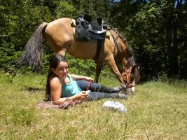 Foto 8 Wanderreiten für Erwachsene, Entschleunigen in Todtmoos Au, Pferdetrekking, Reitferien