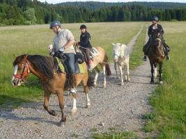 Foto 10 Wanderreiten für Erwachsene, Entschleunigen in Todtmoos Au, Pferdetrekking, Reitferien