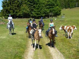 Foto 11 Wanderreiten für Erwachsene, Entschleunigen in Todtmoos Au, Pferdetrekking, Reitferien