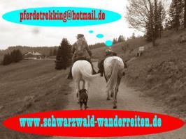 Foto 36 Wanderreiten für Erwachsene - Pferdetrekking - Reiturlaub im Schwarzwald
