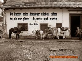Foto 3 Wanderreiten für Erwachsene - Pferdetrekking - Reiturlaub im Schwarzwald