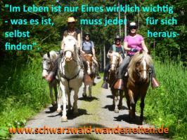 Foto 12 Wanderreiten für Erwachsene - Pferdetrekking - Reiturlaub im Schwarzwald