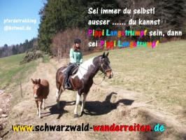 Foto 3 Wanderreiten für Jugendliche  08. - 13. August 2016