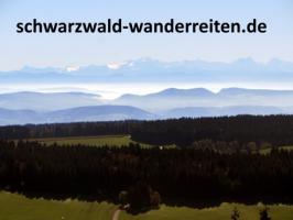 Foto 2 Wanderreiten im Naturpark Südschwarzwald ab Todtmoos Au