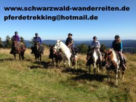 Foto 6 Wanderreiten im Naturpark Südschwarzwald ab Todtmoos Au