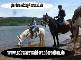 Wanderreiten Schwarzwald Todtmoos Au nicht nur für Frauen