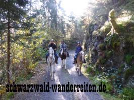 Foto 2 Wanderreiten Schwarzwald Todtmoos Au nicht nur für Frauen