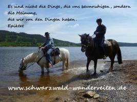 Foto 2 Wanderreiten Todtmoos Au Abenteuer Entschleunigen