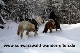 Foto 4 Wanderreiten ab Todtmoos Au - für Erwachsene