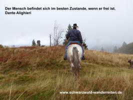 Foto 15 Wanderreiten für abenteuerlustige Reiterinnen und Reiter