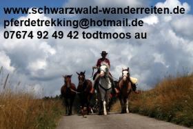 Foto 22 Wanderreiten für abenteuerlustige Reiterinnen und Reiter