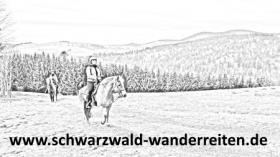 Wanderreiten, Reitferien im Schwarzwald, Todtmoos Au