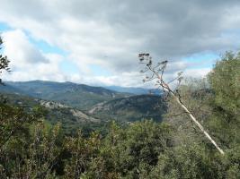 Foto 7 Wanderurlaub in Andalusien