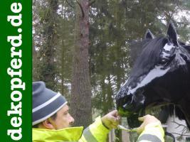 Warum hat Dein Deko Pferd keine Hufeisen… ? Oh nicht gewusst das es Deko Pferde mit Hufeisen gibt ...