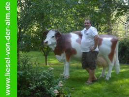 Foto 3 Was Du hast noch keine Deko Kuh im Garten ja dann sag es den Osterhasen und vielleicht bringt er dann eine zu Ostern ...