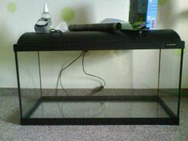 Foto 2 Water Home Aquarium + Zubeh�r