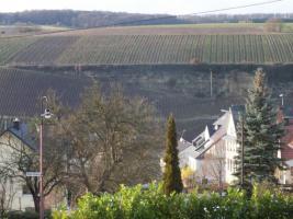 Foto 6 Wehr /Mosel an der Grenze zu Luxemburg Wohnhaus für die Großfamilie in Top Lage