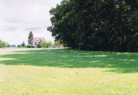 Foto 6 Weideplatz in familiärer Atmosphäre im Havelland