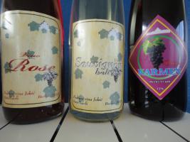 Foto 2 Wein