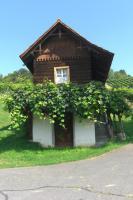Weingarten mit ''Kellerstöckl''