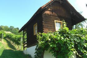 Foto 2 Weingarten mit ''Kellerstöckl''