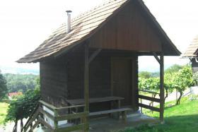Foto 3 Weingarten mit ''Kellerstöckl''