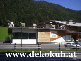 Werbefiguren - Liesel von der Alm - Dekorationsfiguren oder Deko Huhn oder Deko Pferd oder doch ne Deko Kuh ... ja dann www.dekomitpfiff.de anklicken ...