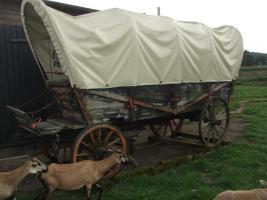 Western - Planwagen - Kutsche