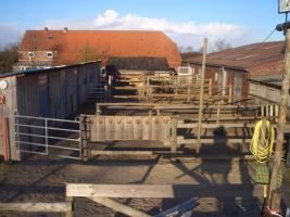 Foto 3 Westernranch zu verkaufen