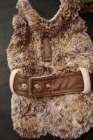 Foto 7 Winterbekleidung für den modernen Hunde von heute