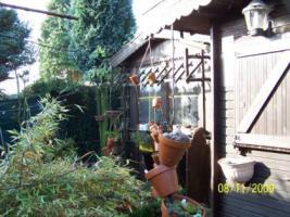 Foto 2 Winterfestes Blockhaus mit Festgasanschluss - auch Ratenzahlung.