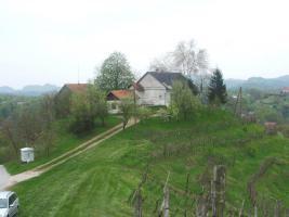Winzerhaus mit Weingarten - Slowenien, Haloze