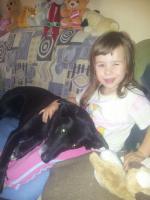 Wir Suchen eine Hundebetreuung für unseren Hund
