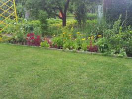 Foto 4 Wir verkaufen unseren kleinen Garten