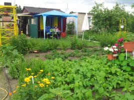 Foto 6 Wir verkaufen unseren kleinen Garten